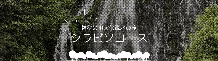 神秘の池と伏流水の滝 シラビソコース